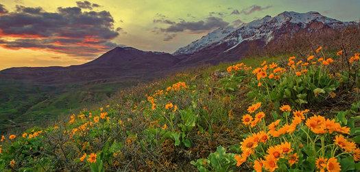 5 Unforgettable Spring Hikes