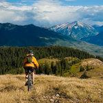 Bike Helmet Buyer's Guide