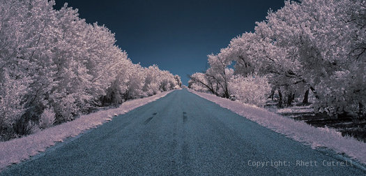 Infrared Photography Tips and Tricks