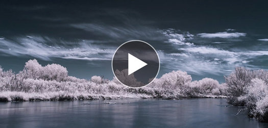 SHIFTS: An Infrared Timelapse Video